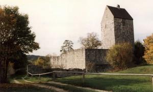 Die Schweppermannsburg 1990 / Foto: Wikipedia / MacElch (Rainer Kunze) / CC BY-SA 3.0 DE