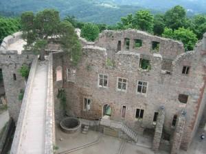 Schloss Auerbach mitsamt Kiefer