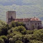 Burg Greifenstein im Wienerwald zu verkaufen: Wer zahlt 3,5 Millionen?