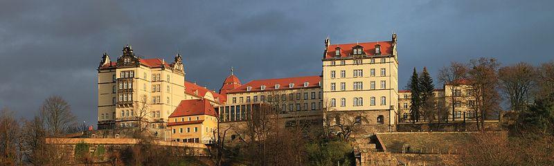Schloss Sonnenstein über Pirna / Foto: Wikipedia/Norbert Kaiser
