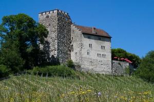 Schloss Habsburg wurde den Habsburgern schnell zu klein / Foto: Wikipedia/Roland Zumbuehl