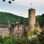 Burg Eppstein: Schafe als Rasenmäher am Steilhang