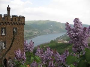 Burg Sooneck: Idyllisch gelegen.