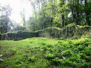 Die Ruinen der Rüdenburg sind teilweise von Moos überwachsen / Foto: Wikipedia/Machahn