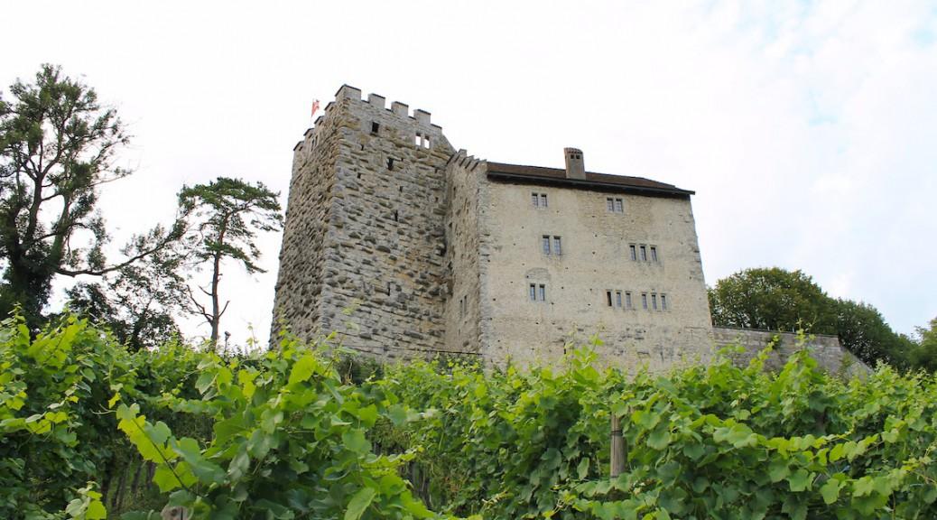 Schloss Habsburg / Foto: Burgerbe.de
