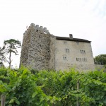 Schloss Habsburg: Keimzelle eines Weltreichs