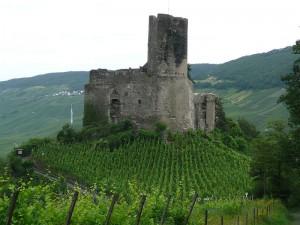 Burg Landshut in Bernkastel-Kues - umgeben von Weinbergen, wie sich das gehört in RLK / Foto: Wikipedia/O de Andrade