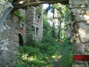 Die Ruine von Burg Klingenberg / Foto: Wikipedia/Martin Windischhofer (public domain)