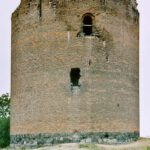 Dachs findet slawische Fürstengräber bei Burg Stolpe
