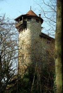 Burg Reichenstein (Schweiz) / Foto: Wikipedia/Roland Zumbühl, Arlesheim / CC Attribution/Share-Alike License