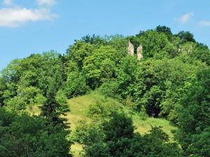 Die Ruine der Neckarburg / Foto: Harke / CC-BY-SA-3.0,2.5,2.0,1.0