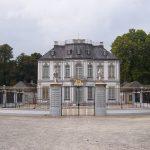 Holzkäfer im Parkett von Jagdschloss Falkenlust