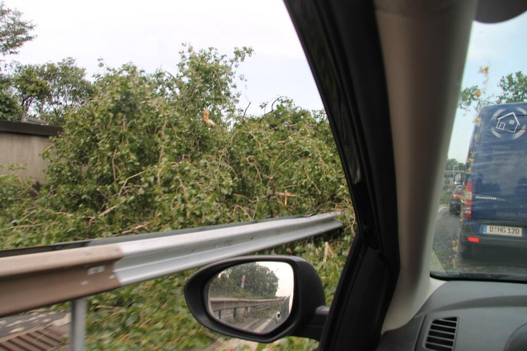 Äste und Blätterberge auf der Nachbar-Fahrbahn
