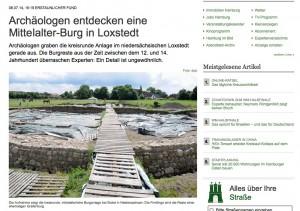 Das Hamburger Abendblatt druckt einen Artikel der DPA zu den Ausgrabungen / Bild: Screenshot