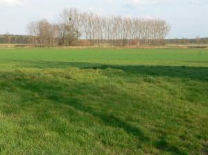 Von Burg Wahrenholz ist heute nichts mehr zu sehen... Foto: gemeinfrei