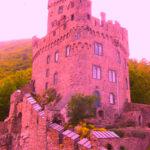 743 Leute wollen Burgenblogger auf Sooneck werden