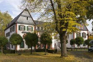 Ein Renaissance-Schmuckstück: Für das Alte Schloss Büdesheim werden jetzt per Bieterverfahren Küfer gesucht / Foto: Wikipedia / Rudolf Stricker / CC-Lizenz