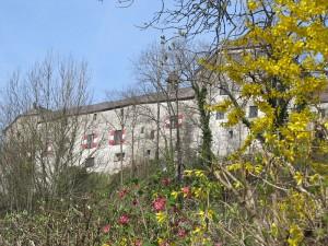 Blick vom Richard-Strauss-Höhenweg auf die Burg / Foto: Wikipedia / Susanne Tofern / CC-BY-SA 2.0