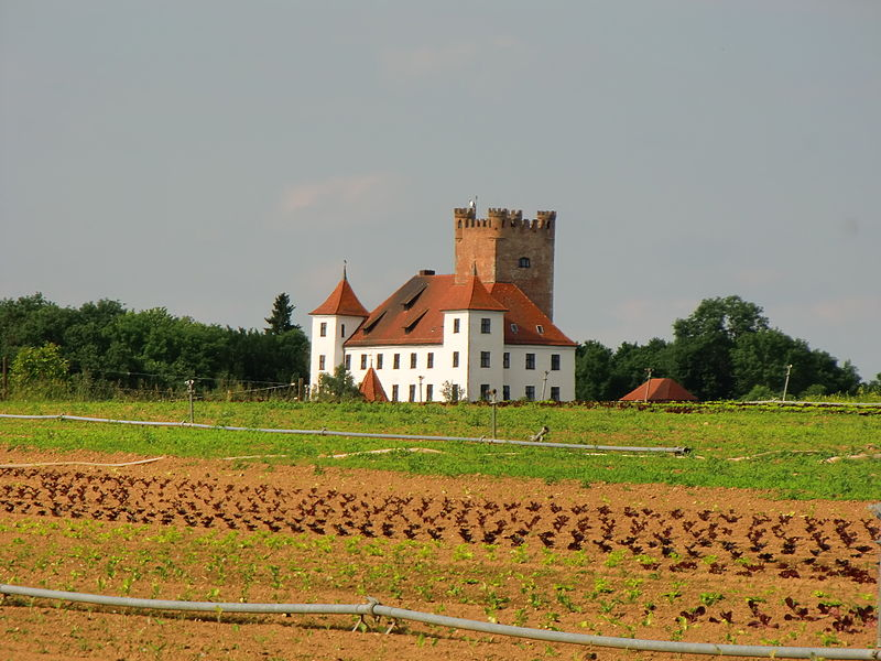Blick auf Schloss Reisensburg / Foto: Wikipedia / Gabriele Knöpfle / CC-BY-SA 3.0