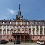 Deutsches Elfenbeinmuseum soll ins Schloss Erbach ziehen