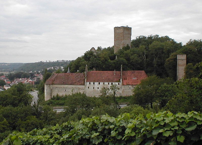 Burg Ehrenberg (Neckar)