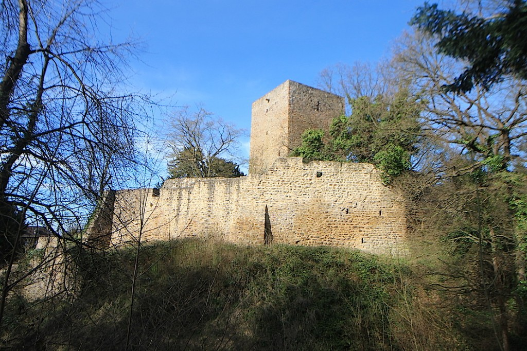 Der Bergfried ist 20 Meter hoch.
