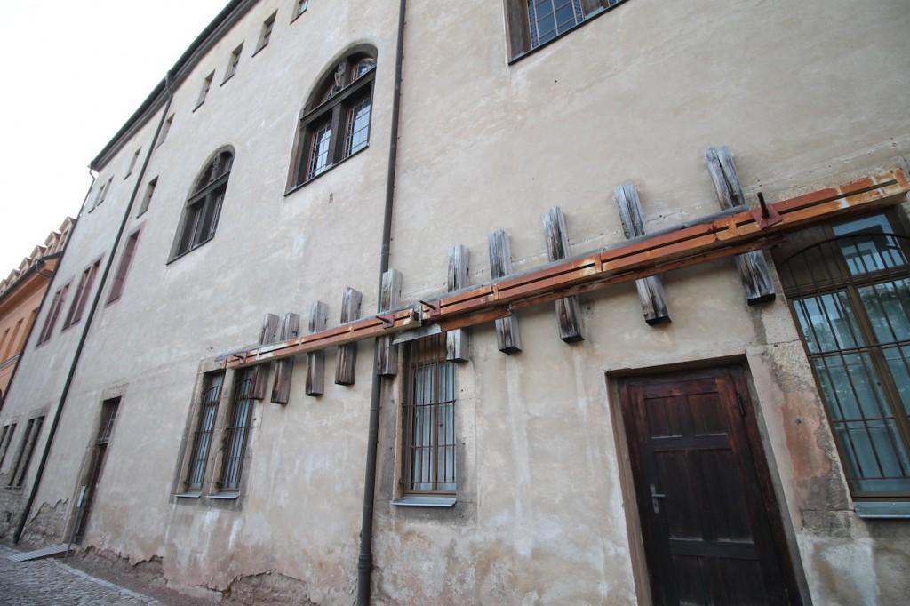 Maueranker im Nordflügel Foto: Burgerbe.de