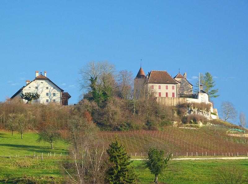 Schloss Bavois wurde versteigert / Foto: Wikipedia / Schloss Bavois / CC-BY-SA 3.0