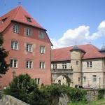 Schloss Brackenheim soll Hotel und Weinerlebniswelt werden