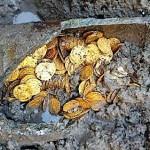 Römischer Goldschatz in Como gefunden