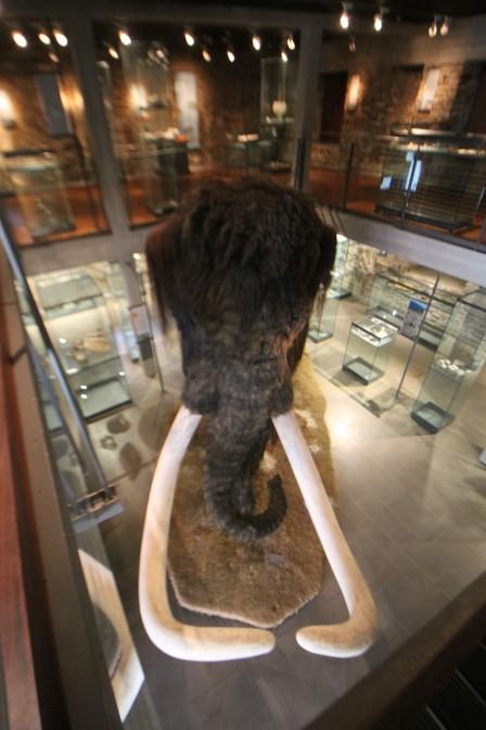 Das Mammut von Schloss Werdringen / Foto: Burgerbe.de